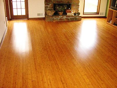 Bamboo Floor & New Used and Unusual Flooring Ideas! - Lancaster PA Remodeling Tips ...